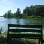 A view of the lake on the hiking trail